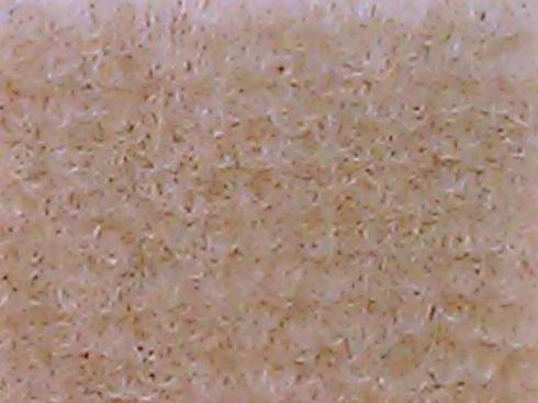 Beige exhibition carpet