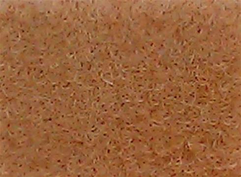Camel exhibition carpet