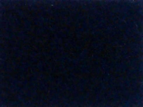 Noir exhibition carpet