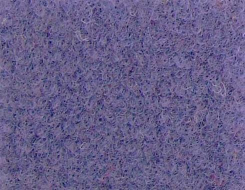 Parme Needle Punch Velour exhibition carpet