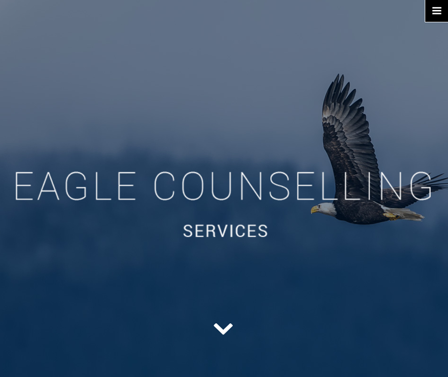 Website of the week: Eagle Counselling Services