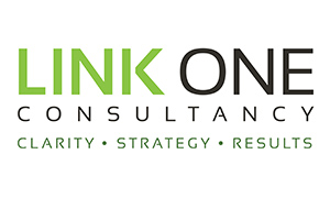 Link One Consultancy logo design by Toolkit Websites, Southampton